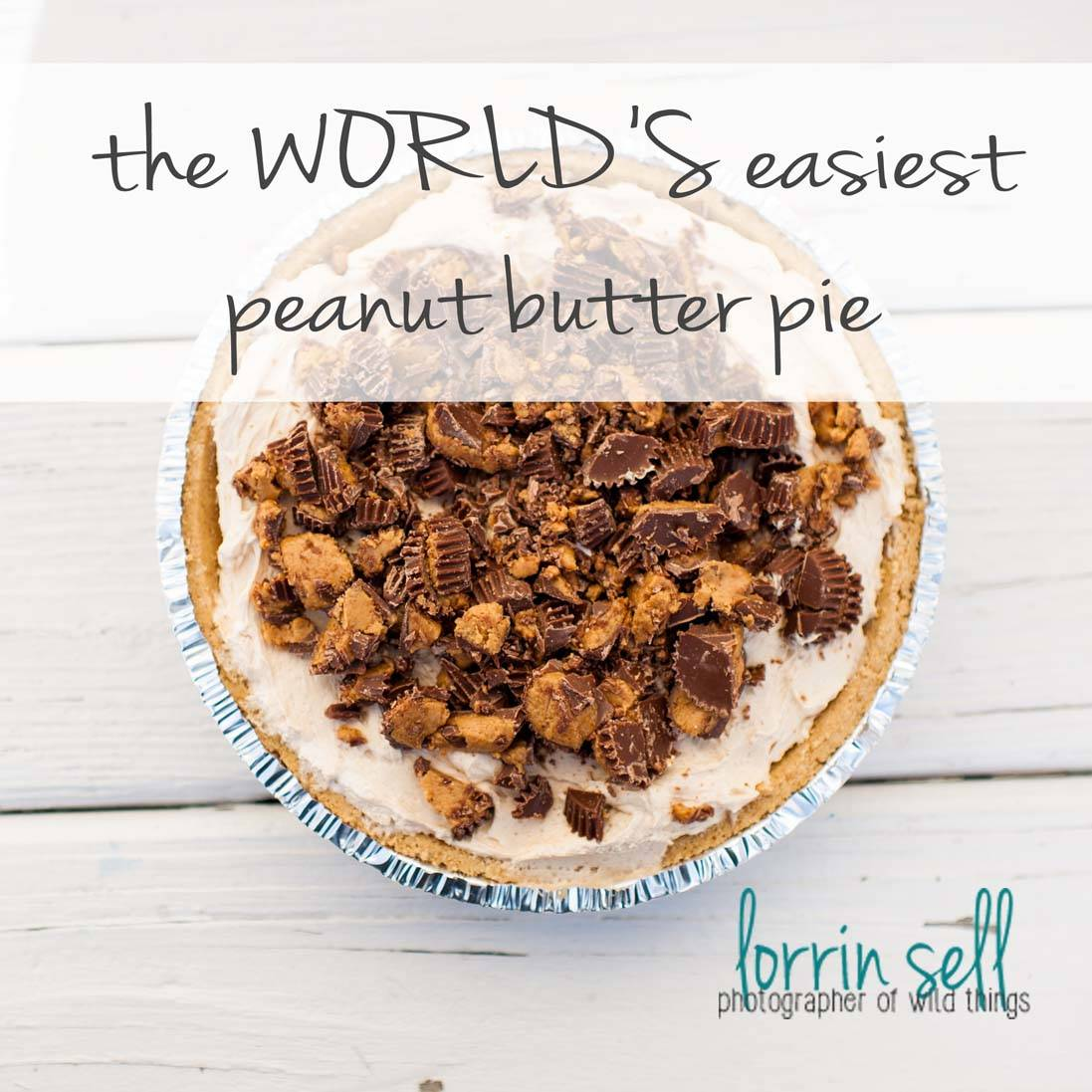 this is honestly the best pie i have ever had. so delicious, and so easy!