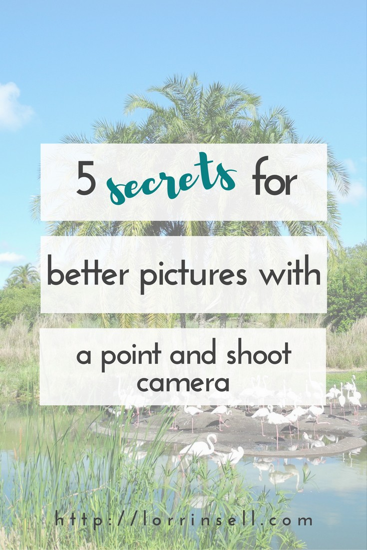 thinking you will only be able to take great pictures if you get a dslr? that's just not the case!! check out these secrets!