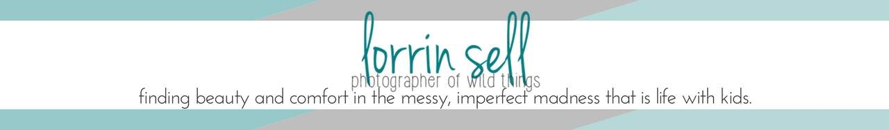 lorrin sell   photographer of wild things