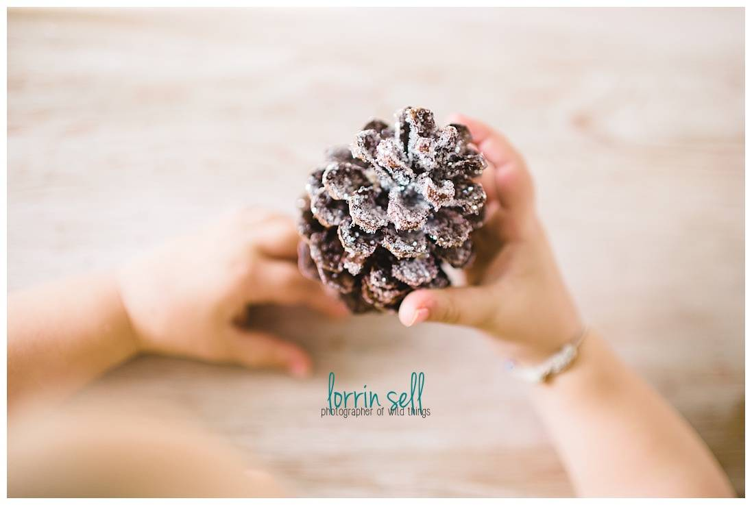 these diy pine cones are so cute, and ridiculously easy for anyone to make!