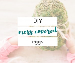 I can't believe these DIY moss covered eggs, are made out of scrap paper and a plastic bag! So easy, and they look great!