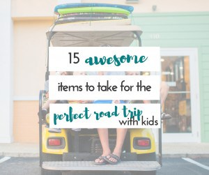These things absolutely make our road trips with kids so much easier. Great list!