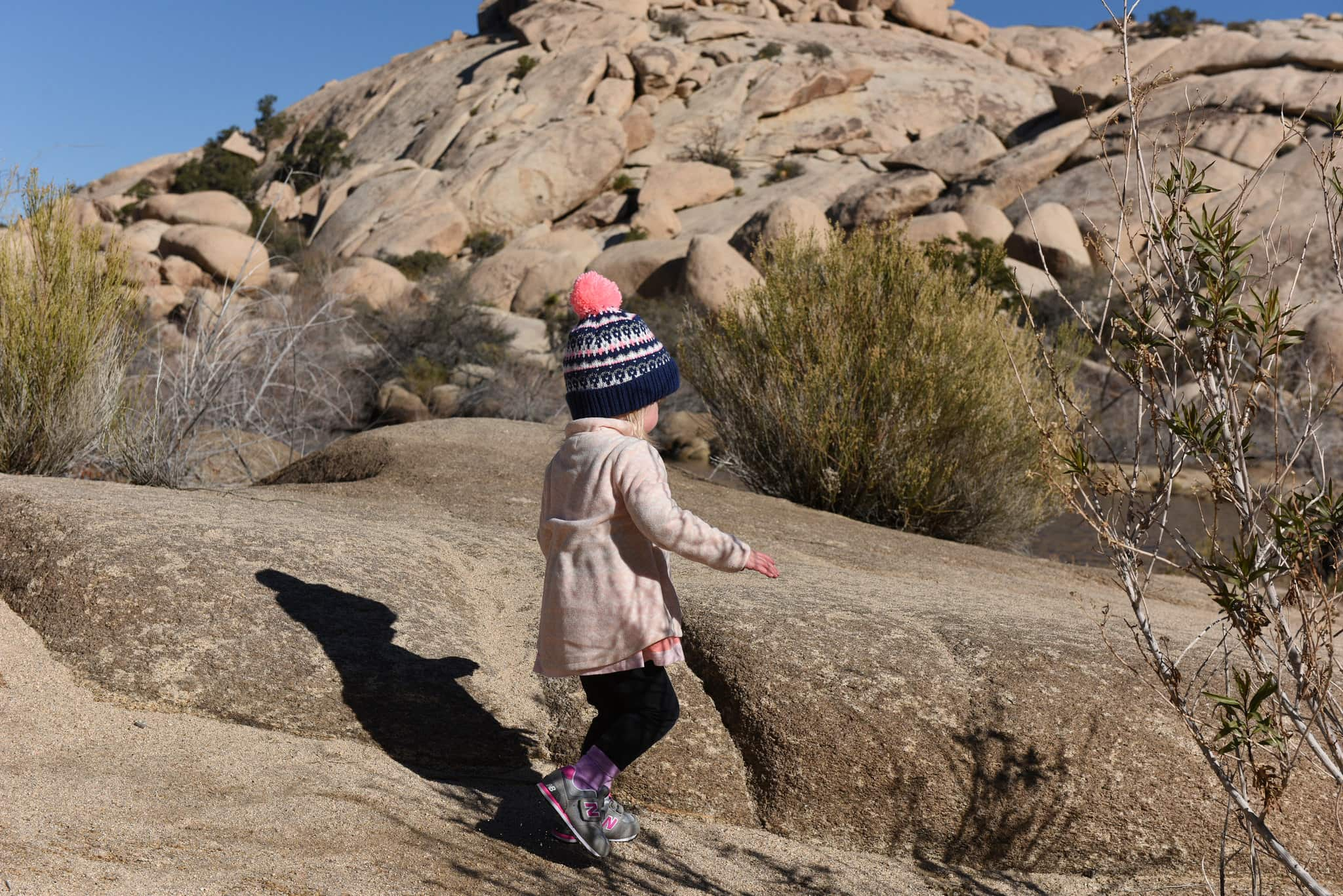 10 amazing national parks to visit with kids