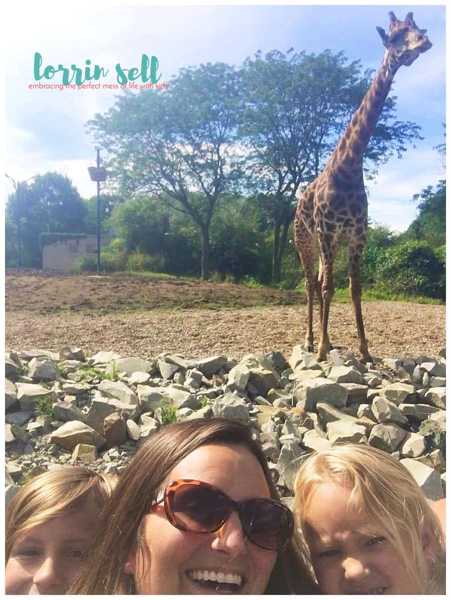Kids love a trip to the zoo. Before your next trip to the zoo, it will help to think about how to prepare for a trip to the zoo with kids.