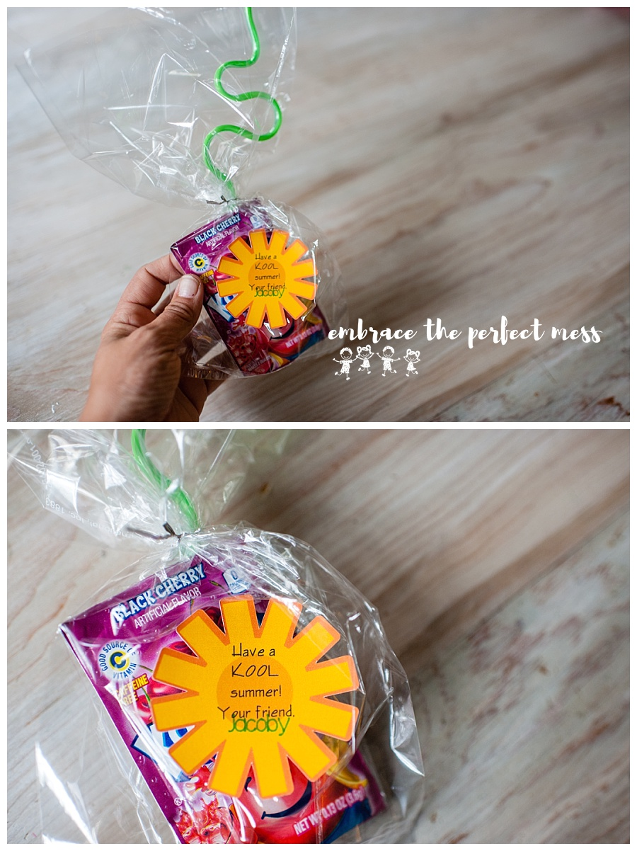 These simple end of the year classmate treats are perfect for any size class because they are so easy to make, and super cheap!! Great ideas for end of the school year gifts!